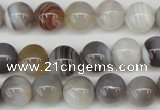 CAA225 15.5 inches 10mm round botswana agate gemstone beads