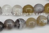 CAA226 15.5 inches 12mm round botswana agate gemstone beads