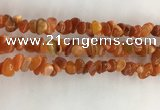 CAA3806 15.5 inches 4*6mm - 8*10mm chips red agate beads wholesale