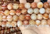 CAA4954 15.5 inches 14mm round Madagascar agate beads wholesale