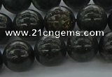 CAE05 15.5 inches 12mm round astrophyllite beads wholesale
