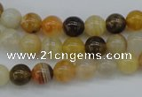 CAG4322 15.5 inches 8mm round botswana agate gemstone beads