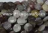 CAG750 15.5 inches 8mm faceted coin botswana agate beads wholesale