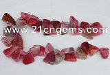 CAG8542 Top drilled 15*20mm - 25*30mm freeform dragon veins agate beads