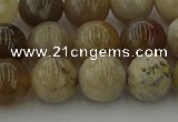 CAG9403 15.5 inches 10mm round ocean fossil agate beads wholesale