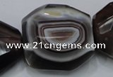 CAG992 15.5 inches 30*40mm faceted freeform botswana agate beads