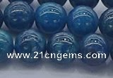 CAP363 15.5 inches 10mm round apatite gemstone beads wholesale