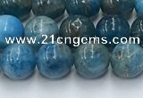 CAP630 15.5 inches 6mm round apatite beads wholesale