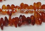 CAR116 16 inches 3*8mm - 4*10mm natural amber chips beads