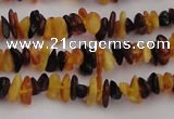 CAR204 24 inches 3*8mm natural amber chips beads wholesale