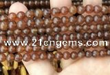 CAR236 15.5 inches 5mm - 5.5mm round natural amber beads wholesale