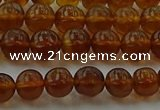 CAR526 15.5 inches 5mm - 6mm round natural amber beads wholesale