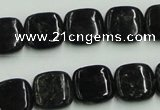 CBT06 16 inches 14*14mm square natural biotite beads wholesale