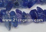 CCH294 34 inches 8*12mm dyed kyanite chips gemstone beads wholesale