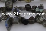 CCH642 15.5 inches 6*8mm - 10*14mm labradorite chips beads