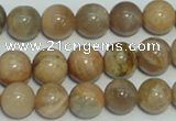 CCS305 15.5 inches 12mm round natural sunstone beads wholesale
