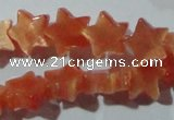 CCT805 15 inches 6mm star cats eye beads wholesale