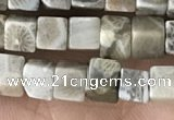 CCU458 15.5 inches 4*4mm cube fossil coral beads wholesale