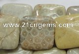 CFA18 15.5 inches 25*25mm square chrysanthemum agate beads