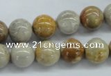 CFC63 15.5 inches 12mm round fossil coral beads wholesale