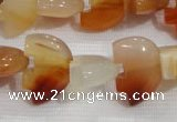 CFG790 12.5 inches 14*18mm carved animal red agate gemstone beads