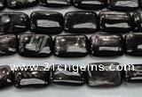 CHS89 15.5 inches 10*14mm rectangle natural hypersthene beads