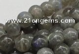 CLB04 16 inches 12mm round labradorite gemstone beads wholesale