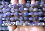 CLB1022 15.5 inches 10mm faceted coin labradorite gemstone beads