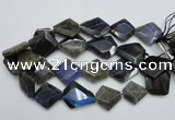 CLB218 15.5 inches 25*30mm - 30*40mm faceted freeform labradorite beads