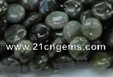 CLB38 15.5 inches 10mm flat round labradorite gemstone beads