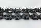CLB380 24*32mm - 25*35mm faceted octagonal black labradorite beads
