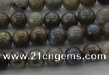 CLB602 15.5 inches 8mm round AB-color labradorite beads