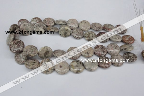 CMB11 15.5 inches 20mm flat round natural medical stone beads