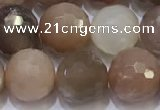 CMS1498 15.5 inches 10mmm faceted round rainbow moonstone beads