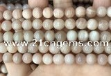 CMS1672 15.5 inches 8mm round moonstone beads wholesale