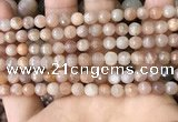 CMS1678 15.5 inches 6mm faceted round moonstone beads wholesale