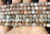 CMS1692 15.5 inches 6mm faceted round rainbow moonstone beads