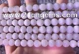 CMS1916 15.5 inches 8mm round white moonstone beads wholesale