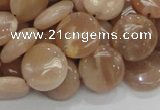 CMS23 15.5 inches 14mm flat round moonstone gemstone beads wholesale