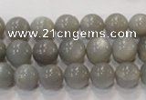 CMS305 15.5 inches 10mm round natural grey moonstone beads wholesale