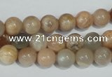 CMS503 15.5 inches 8mm round moonstone beads wholesale