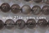 CMS852 15.5 inches 8mm round natural black moonstone beads