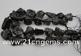 CNG1096 15.5 inches 18*25mm - 25*35mm nuggets ammonite fossil beads