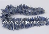 CNG3382 15.5 inches 3*15mm - 5*30mm sticks blue kyanite beads