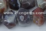 CNG5680 12*16mm - 15*20mm faceted nuggets botswana agate beads