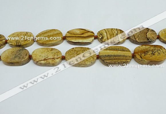 CNG7053 15.5 inches 20*30mm - 22*35mm freeform picture jasper beads