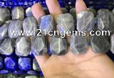 CNG7480 15.5 inches 18*25mm - 20*28mm faceted freeform labradorite beads