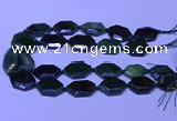 CNG7627 20*30mm - 22*32mm faceted freeform Canadian Jade beads