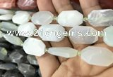 CNG7812 13*18mm - 18*25mm faceted freeform light prehnite beads