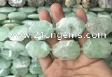 CNG7831 20*28mm - 25*35mm faceted freeform light prehnite beads